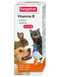 Beaphar Vitamine B-Complex - Voedingssupplement - Weerstand - 50 ml