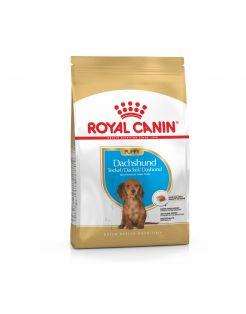 Royal Canin Dachshund Puppy - Puppy-Hondenvoer - 1.5 kg