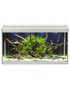 Akvastabil Family Aquarium - Aquaria - 70x32.5x37 cm 80 l Grijs Wit