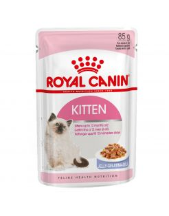 Royal Canin Kitten In Jelly - Kattenvoer - 12x85 g