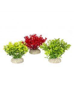 Aqua Della Decor Plant Glosso - Aquarium - Kunstplant - 9 cm Assorti