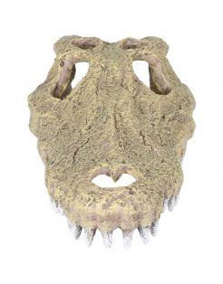 Aqua Della Krokodil Schedel - Aquarium - Ornament - 28.5x14.5x8 cm