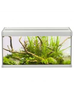 Akvastabil Family Aquarium - Aquaria - 60x30x32 cm 54 l Grijs Wit