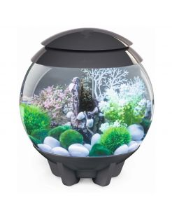 Biorb Aquarium Halo 15 Mcr - Aquaria - Grijs