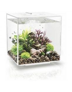 Biorb Aquarium Cube 30 Mcr - Aquaria - 30 l Transparant