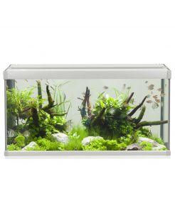 Akvastabil Family Aquarium - Aquaria - 80x35x42 cm 112 l Grijs Wit
