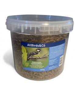 Allbirds&Co Gedroogde Meelwormen In Emmer - Voer - 850 g