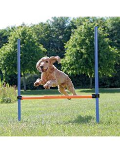 Trixie Dog Activity Agility Horde - Hondensport - 123x115x3.0 cm Blauw Oranje