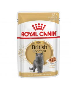Royal Canin British Shorthair Adult Natvoer - Kattenvoer - 12x85 g