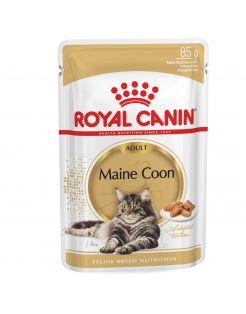 Royal Canin Maine Coon Adult Natvoer - Kattenvoer - 12x85 g