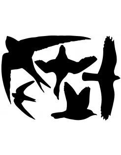 Best For Birds Raamstickers Vogel Assorti - Afweermiddel -