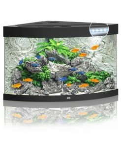 Juwel Aquarium Trigon 190 Led 70x70x60 cm - Aquaria