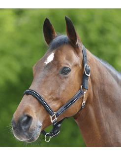 Waldhausen Halster Chrystal Verstelbaar Zwart - Paardenhalster