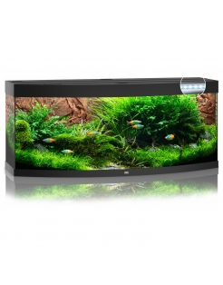 Juwel Aquarium Vision 450 Led 151x61x64 cm - Aquaria
