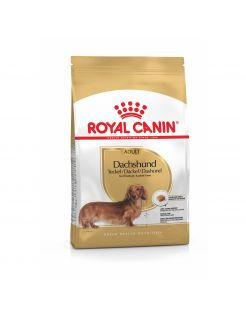 Royal Canin Dachshund Adult - Hondenvoer