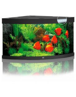 Juwel Aquarium Trigon 350 Led 87x87x65 cm - Aquaria