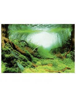 Superfish Deco Poster - Aquarium - Achterwand