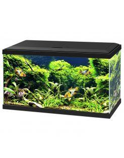 Ciano Aquarium 60 Led Cf80 60x30x34 cm - Aquaria
