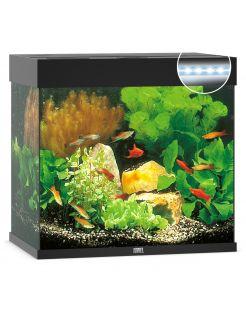 Juwel Aquarium Lido 120 Led 61x41x58 cm - Aquaria