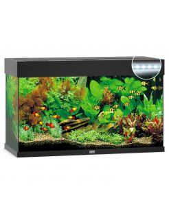 Juwel Aquarium Rio 125 Led 80x35x50 cm - Aquaria