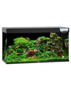 Juwel Aquarium Rio 350 Led 121x51x66 cm - Aquaria