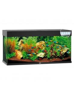 Juwel Aquarium Rio 240 Led 121x41x50 cm - Aquaria