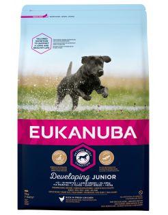 Eukanuba Developing Junior Large Breed Kip - Hondenvoer