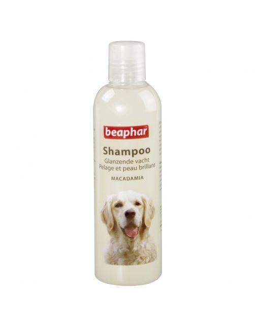 Beaphar Shampoo Glanzende Vacht Hond - Hondenvachtverzorging - 250 ml