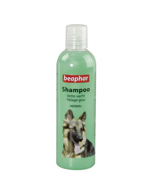Beaphar Shampoo Vette Vacht Hond - Hondenvachtverzorging - 250 ml