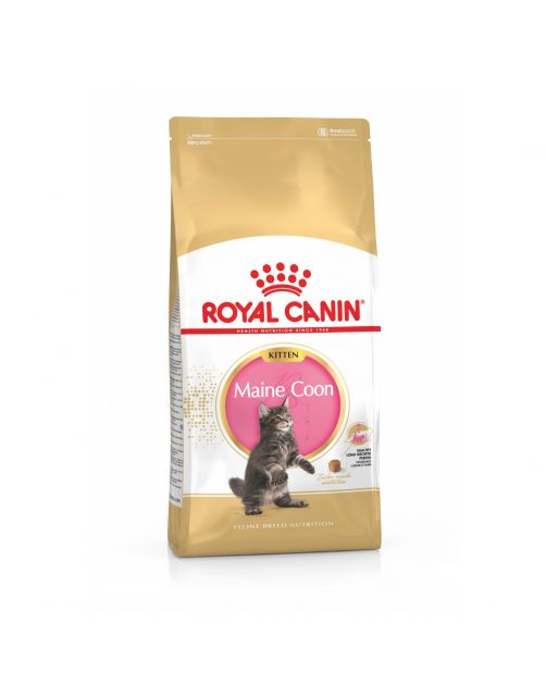 Royal Canin Maine Coon Kitten - Kattenvoer