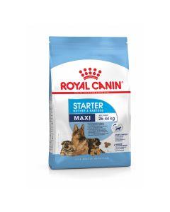 Royal Canin Maxi Starter Mother & Babydog - Hondenvoer - 15 kg