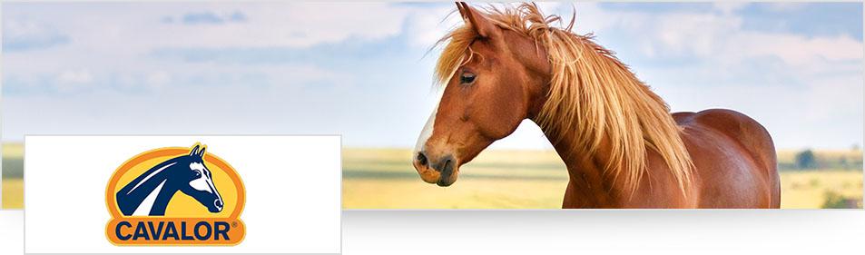 Cavalor logo en paard