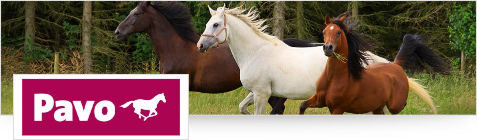 Pavo paardenvoer