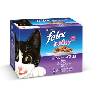 Felix junior