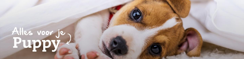 Alles voor je puppy