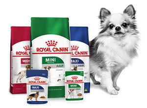 royal canin volwassen